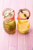 El sistema de limonada del verano de la remolque con hielo y la fruta les gustan las hojas del limón, de la cal y de menta, bebid Imagenes de archivo