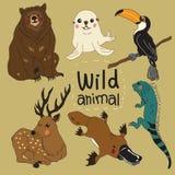 El sistema de los animales salvajes del diseño de la historieta ilustración del vector