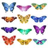 El sistema de mariposas transparentes de la acuarela en azul, rosado, anaranjado, ocre y lila florece en un fondo blanco Fotografía de archivo libre de regalías