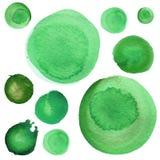 El sistema de verde de la primavera de la acuarela, malaquita, trébol circunda Los elementos redondos del Watercolour para el log libre illustration