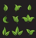 El sistema de verde hojea los elementos de los iconos Fotos de archivo