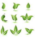 El sistema de verde hojea los elementos de los iconos Foto de archivo