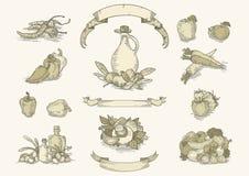 El sistema del ingrediente alimentario del vintage ilustración del vector