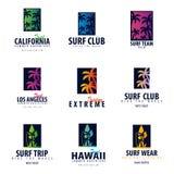 El sistema del logotipo que practica surf y los emblemas para la resaca aporrean o hacen compras Ilustración del vector Imágenes de archivo libres de regalías