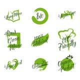 El sistema del producto orgánico, menú verde crudo, 100 naturales, ECO amistoso, gluten libera, verde de la comida del vegano, lo Ilustración del Vector