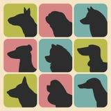 El sistema del vector de diversos perros siluetea iconos en estilo plano de moda Foto de archivo libre de regalías