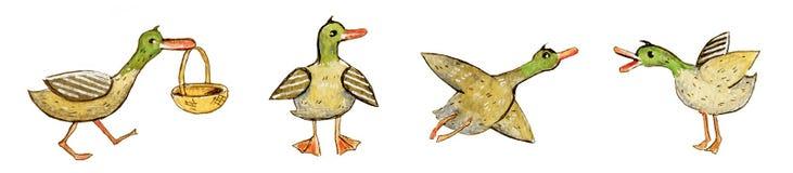El sistema dibujado mano del ejemplo de la acuarela de la historieta de colocación, de vuelo y de ir de los patos con la cesta pa libre illustration