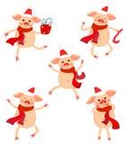 El sistema lindo del Año Nuevo de cerdos en diversas actitudes Cerdos lindos por el año del cerdo ilustración del vector