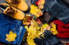 El sistema plano de la endecha de femenino viste en estilo del otoño Fotos de archivo libres de regalías