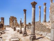 El sitio de Volubilis en Marruecos fotografía de archivo
