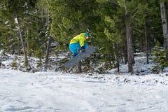 El Snowboarder que salta en las montañas en un fondo del bosque fotos de archivo libres de regalías