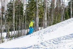El Snowboarder que salta en las montañas en un fondo del bosque imagen de archivo