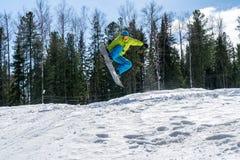 El Snowboarder que salta en las montañas en un fondo del bosque imágenes de archivo libres de regalías