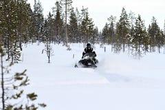 El Snowmobiling en polvo profundo en el más forrest Fotos de archivo libres de regalías