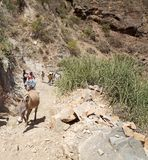 El Sod crater Ethiopia. El Sod crater, Ethiopia: people and at the steep path from and to the bottom of the crater royalty free stock photos