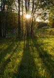 El sol brilla a través Fotos de archivo libres de regalías