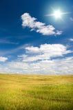 El sol en cielo azul arriba del prado floral. Imagen de archivo