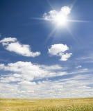 El sol en cielo azul arriba del prado floral. Fotos de archivo