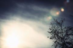 El sol está viniendo Imagen de archivo libre de regalías
