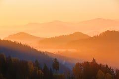 El sol poniente colorea las colinas cubiertas con el bosque del otoño Fotos de archivo libres de regalías