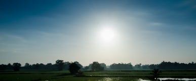 El sol por la mañana. Imágenes de archivo libres de regalías