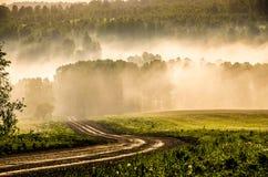 El sol se levanta sobre las nubes del mar y del oro bosque que oculta en la niebla Camino de bosque imágenes de archivo libres de regalías