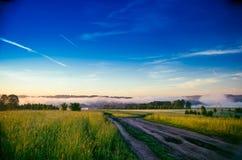 El sol se levanta sobre las nubes del mar y del oro bosque que oculta en la niebla Camino de bosque foto de archivo libre de regalías