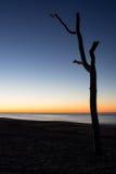 El sol sube a través del Océano Atlántico de Long Island del este, Nueva York Imágenes de archivo libres de regalías