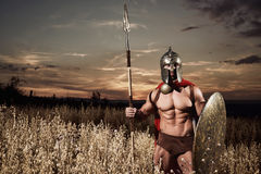 El soldado como espartano en la tenencia del casco redondeó el escudo Fotografía de archivo