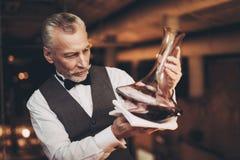 El sommelier elegante experimentado mira el sedimento del vino en jarra Degustation del vino foto de archivo