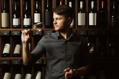 El Sommelier mira el vino blanco en vidrio en sótano imagen de archivo
