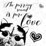 El sonido de ronroneo es amor puro, tarjeta dibujada mano, poniendo letras a la cita de motivación de la caligrafía para los aman Imágenes de archivo libres de regalías