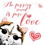 El sonido de ronroneo es amor puro, tarjeta dibujada mano, poniendo letras a la cita de motivación de la caligrafía para los aman Imagen de archivo libre de regalías