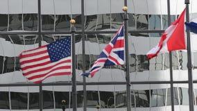 El soplar de las banderas almacen de video