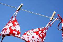 El soplar en el viento Foto de archivo libre de regalías