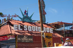 El Squid Roe Stock Photography