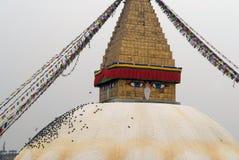 El stupa budista Bodnath, de la cuerda de la bóveda con las banderas tibetanas coloreadas, en una bóveda blanca, las palomas se s Fotos de archivo