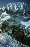 El subir de dos esquiadores Fotografía de archivo