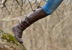 El subir del árbol Fotografía de archivo