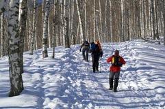 El subir del snowshoer de tres hombres Foto de archivo libre de regalías
