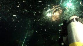 El submarino relaja el vídeo sobre la naturaleza marina en transparente puro del Mar Rojo almacen de video