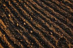 El suelo negro aró el campo Textura de la tierra Fotografía de archivo libre de regalías