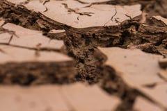 El suelo seco y la tierra agrietada profundamente agrieta la tierra en la tierra roja como símbolo del clima y de la sequía calie fotos de archivo