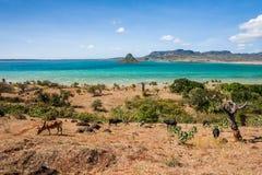 El sugarloaf de la bahía de Antsiranana Imagen de archivo libre de regalías