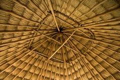 Choza cubierta con paja Imagen de archivo