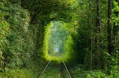 El túnel del amor en el ferrocarril Foto de archivo libre de regalías