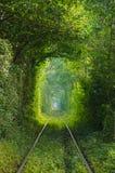 El túnel del amor en el ferrocarril Imágenes de archivo libres de regalías