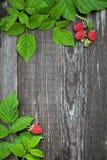 El tablero de madera adornó la frambuesa y las hojas Foto de archivo