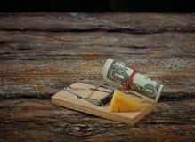 El tablero de madera ratonera-encendido del queso Imagen de archivo