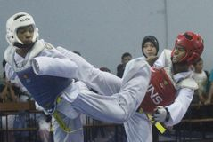 El Taekwondo Imagen de archivo libre de regalías